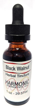 Black Walnut T-8
